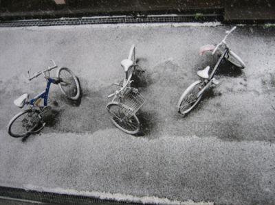 snowy-times_009.jpg
