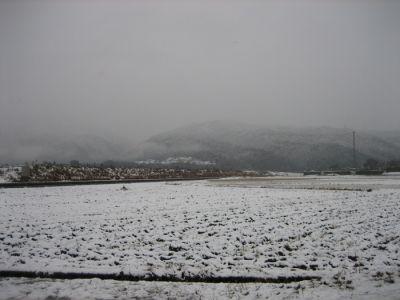 snowy-times_078.jpg